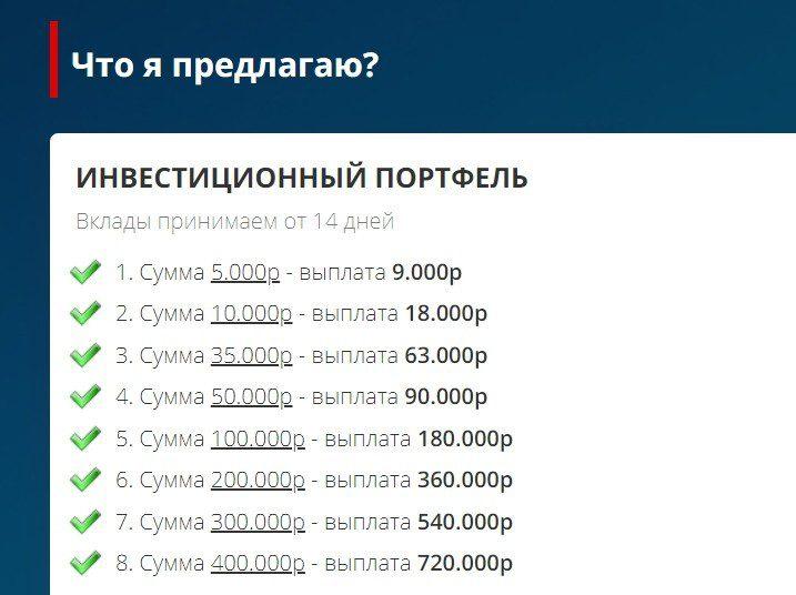 Стоимость участия в инвестиционном проекте Тимура Гареева