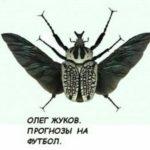 Отзывы о прогнозах от Олега Жукова