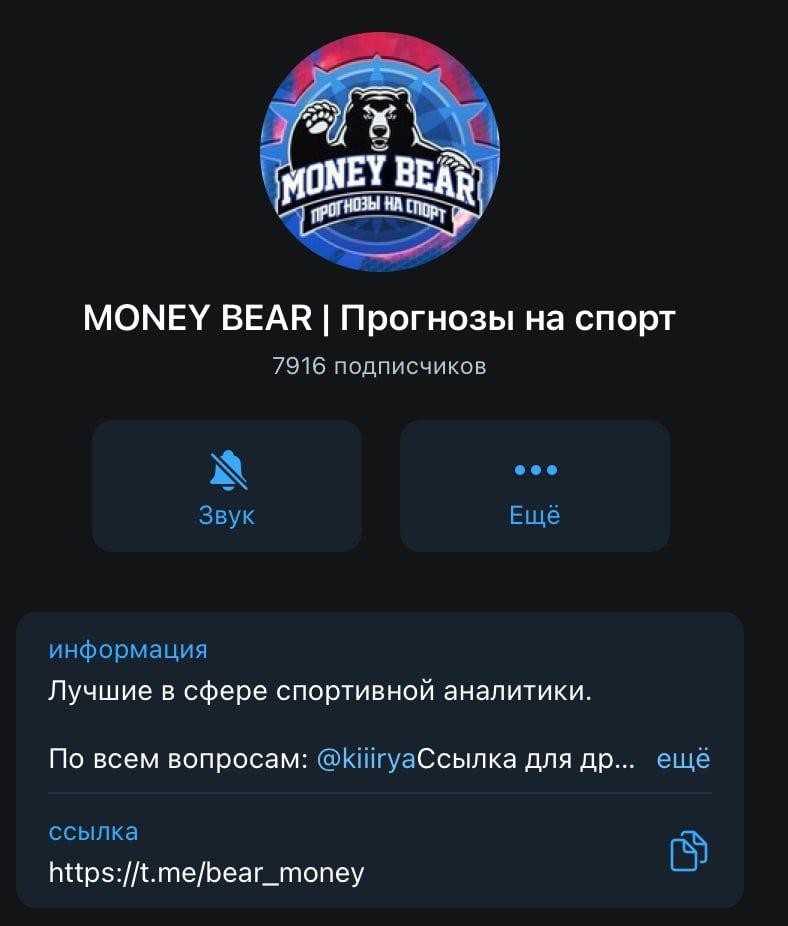 Telegram канал MONEY BEAR