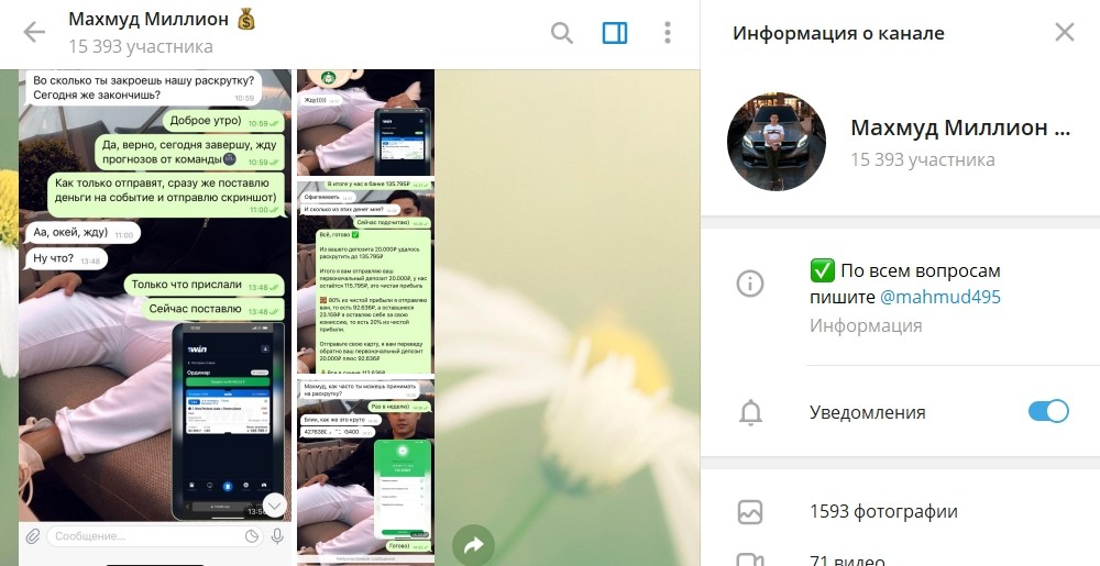 Отзывы о ставках в Телеграмме