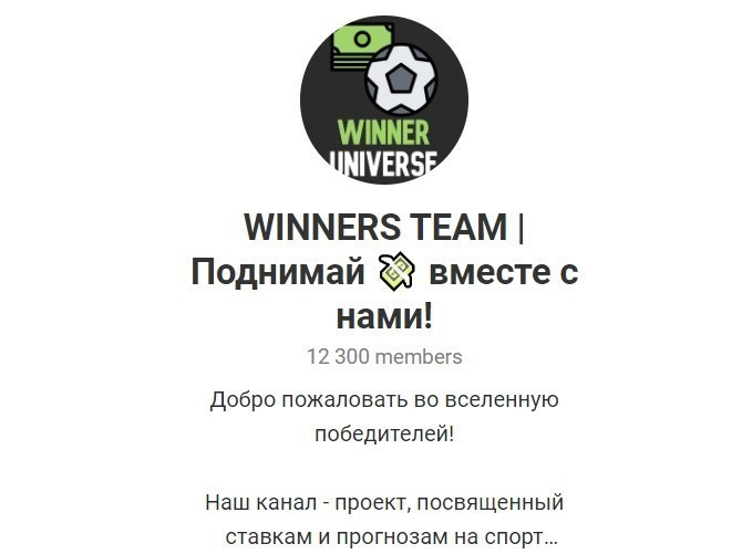 Отзывы о Winners Team - Телеграмм канал