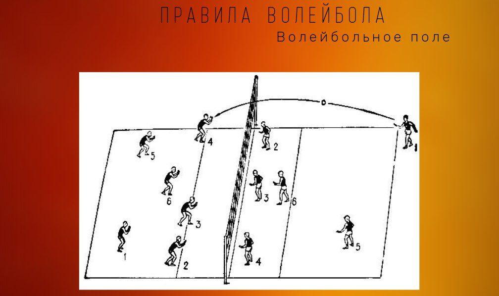 правила волейбола поле